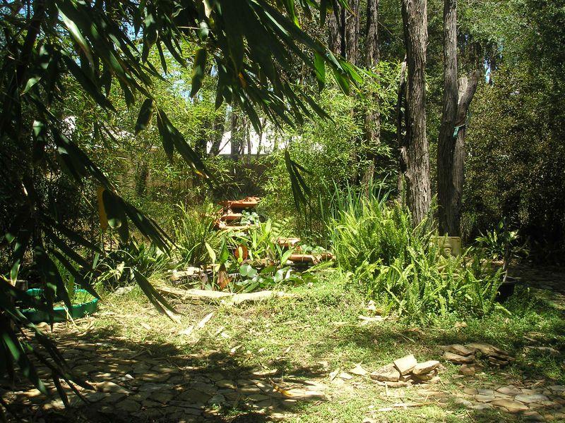 House&garden 008